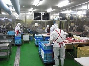 Tuyển gấp 20 lao động nam chế biến thịt bò, lợn tại Nhật Bản