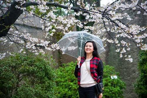 6 lý do khiến bạn đặt chân sang Nhật Bản mà không muốn về
