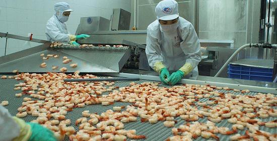 Đơn hàng chế biến thủy sản tuyển 50 lao động nữ làm việc tại Nhật Bản