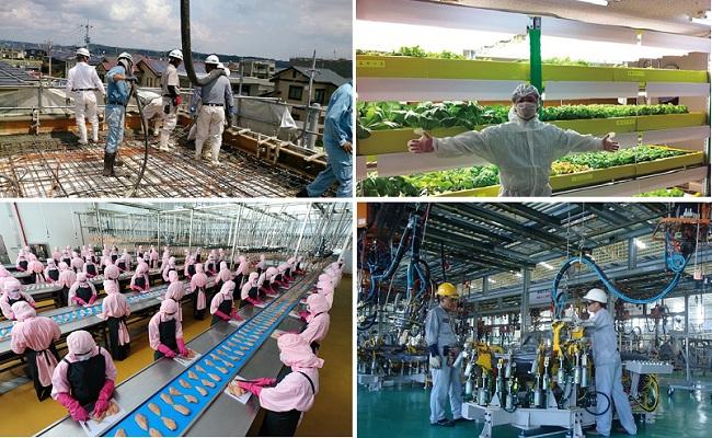 4 ngành nghề lương cực cao dành cho nam giới khi đi xuất khẩu lao động Nhật Bản