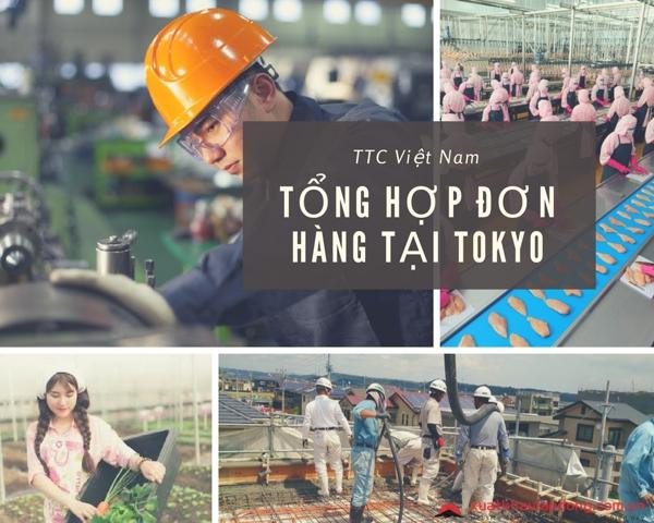 tổng hợp đơn hàng xklđ tại tokyo