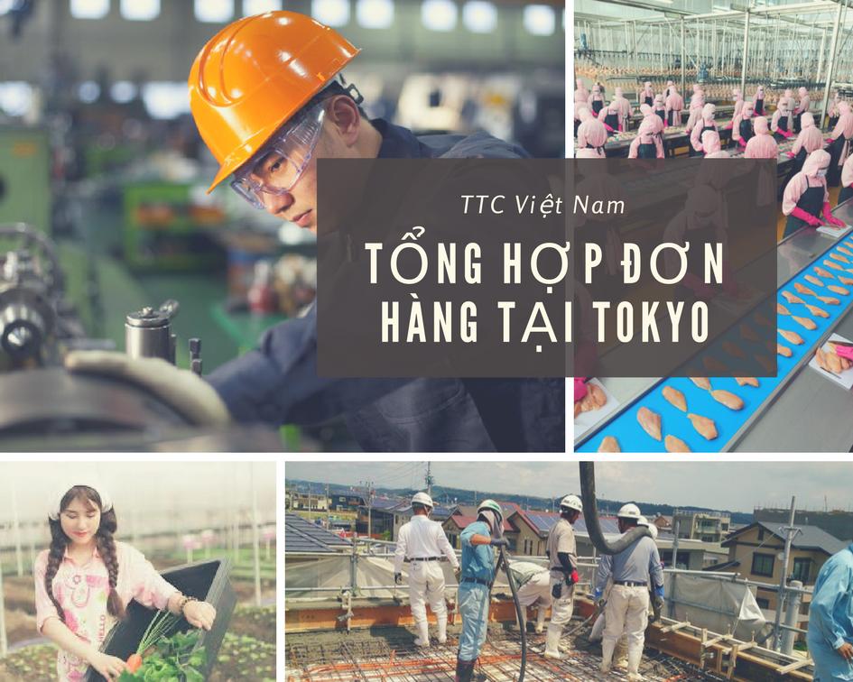 Tổng hợp các đơn hàng xuất khẩu lao động tại Tokyo, Nhật Bản có mức lương cao