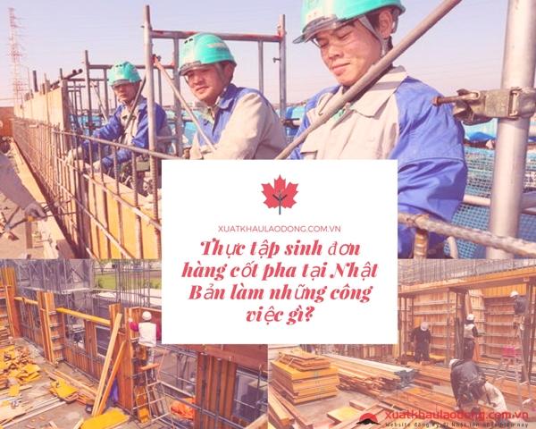 Thực tập sinh đơn hàng cốp pha tại Nhật Bản làm những công việc gì?