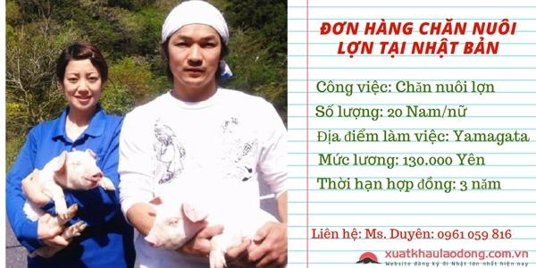 đơn hàng chăn nuôi lợn XKLĐ Nhật Bản