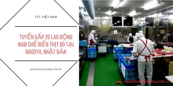 Tuyển gấp 25 Nam/Nữ chế biến thịt bò tại Nagoya, Nhật Bản