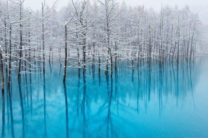 Hồ Xanh Biei, Hokkaido - 5 dia diem tuyet dep khi cam nhan mua dong nhat ban