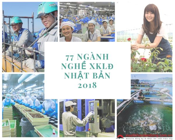 Tổng hợp 77 ngành nghề được cấp phép tại thị trường xuất khẩu Nhật Bản năm 2018