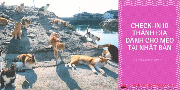 đảo mèo nhật bản