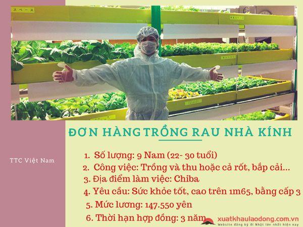 đơn hàng nông nghiệp cho nam thuận tay trái