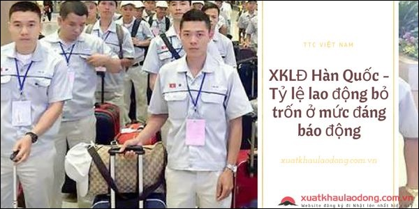 XKLĐ Hàn Quốc - Tỷ lệ lao động bỏ trốn ở mức đáng báo động