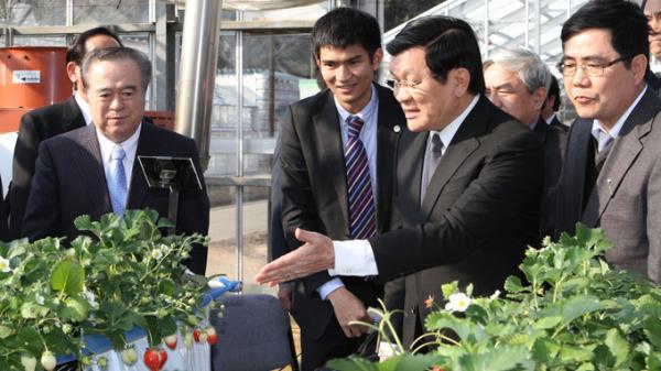 thúc đẩy ngành nông nghiệp việt nam - nhật bản