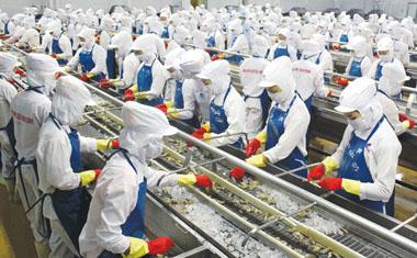 xuất khẩu lao động nữ