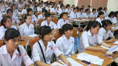 Cơ hội việc làm cho lao động trẻ