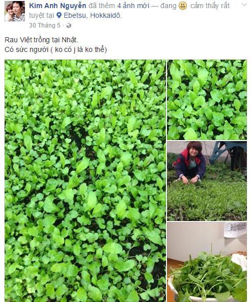 Chia sẻ của các TTS nữ tham gia XKLĐ Nhật Bản tại xuatkhaulaodong.com.vn