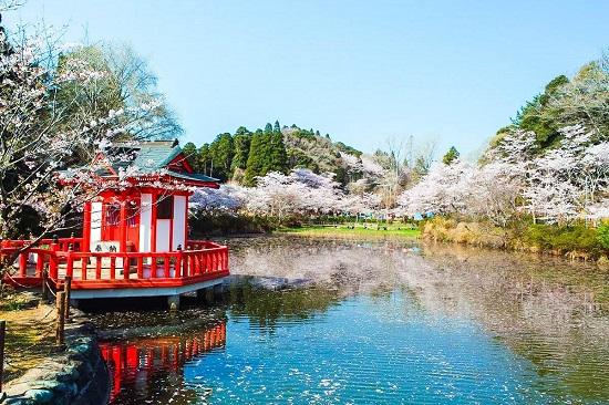 Vẻ đẹp tuyệt vời tại công việc Mobara tỉnh Chiba, Nhật Bản