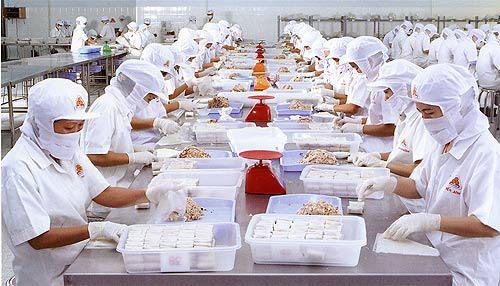 Xuất khẩu lao động - Đơn hàng chế biến thủy sản cần tuyển 10 Nam làm việc tại Hokkaido