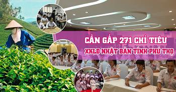 Cần gấp 271 chỉ tiêu xuất khẩu lao động Nhật Bản tỉnh Phú Thọ