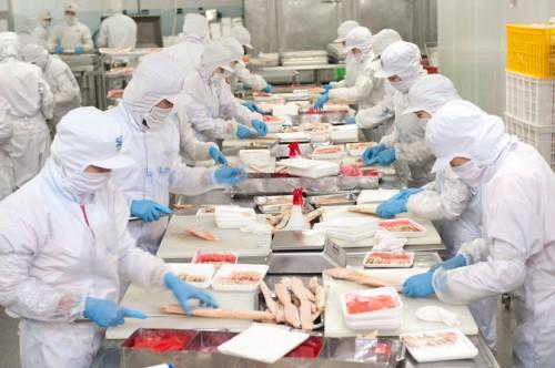 chế biến thực phẩm 1 năm xuất khẩu lao động Nhật Bản