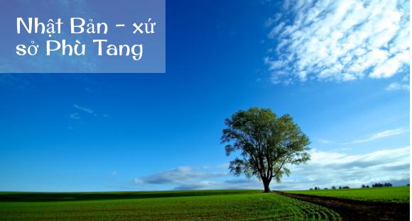 Phù tang là gì? Tại sao gọi Nhật Bản là xứ sở Phù Tang