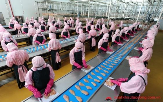 Ngành chế biến hải sản ở Nhật Bản
