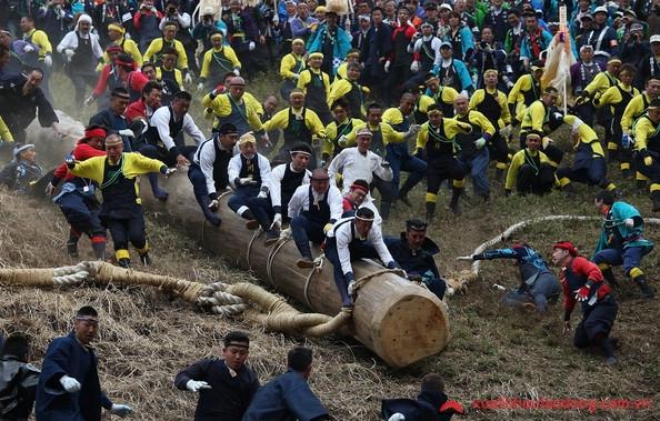 lễ hội onbashira matsuri độc đáo của Nhật Bản