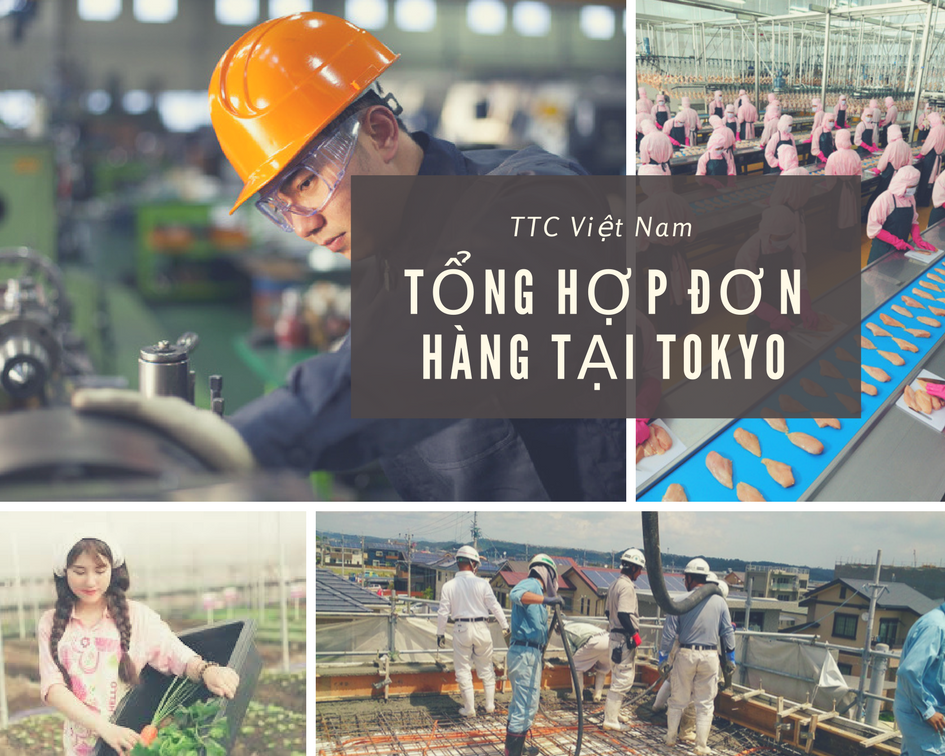 Tổng hợp các đơn hàng XKLĐ tại Tokyo, Nhật Bản lương 40tr/tháng