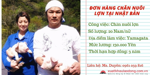 don hang chan nuoi lon xuat khau lao dong nhat ban nam 2018