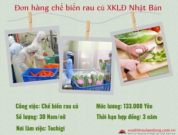 Tuyển 30 Nam/nữ làm chế biến rau củ tại Tochigi, Nhật Bản
