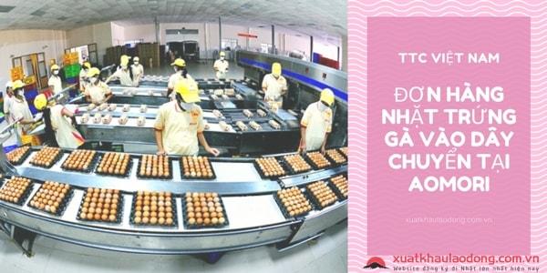 Đơn hàng nữ XKLĐ Nhật Bản nhặt trứng gà vào dây chuyền