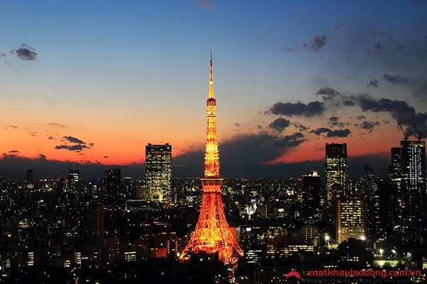 Tháp Tokyo lộng lẫy trong đêm