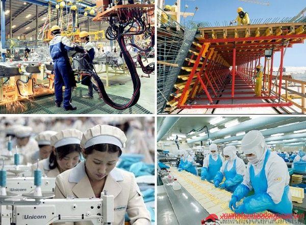 Nhiều ngành nghề được tiếp nhận tại Nhật trong thời gian tới