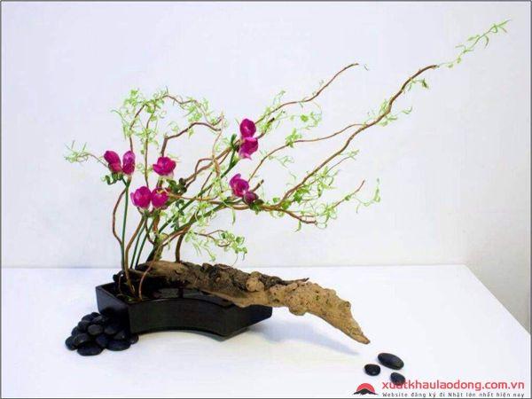 hoa dao - nghe thuat cam hoa nhat ban