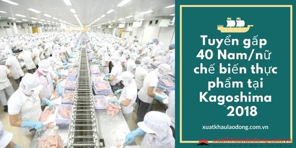 Tuyển gấp 40 Nam/nữ chế biến thực phẩm tại Kagoshima 01/2021