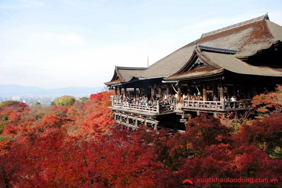 Chùa Kiyomiza-dera