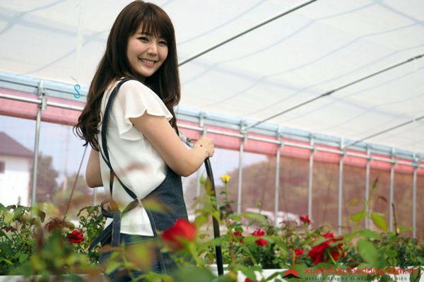Tuyển 30 Nữ trồng hoa, cây cảnh nhà kính tại Gifu, Nhật Bản