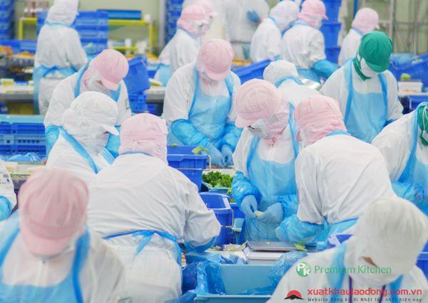 đơn hàng thực phẩm tại hyogo