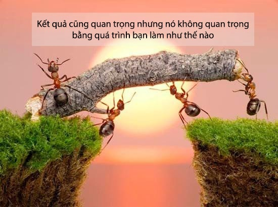 22 năm ở Việt Nam không THẤM bằng 1 năm ở Nhật