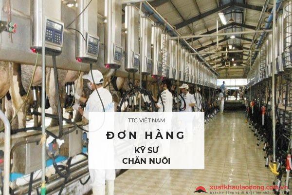 Tuyển 30 kỹ sư chăn nuôi đi Nhật LƯƠNG CAO năm 2018