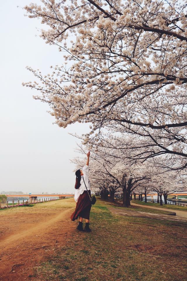 Nhật Bản: Hôm nay con đã nhận được lương chưa?...
