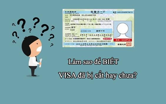 Cách kiểm tra Visa ở Nhật đã bị cắt  hay chưa NHANH NHẤT!
