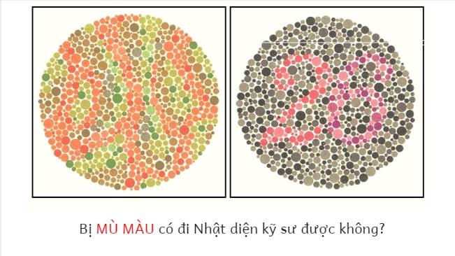 Bệnh mù màu có ĐÁNH MẤT cơ hội đi Nhật diện kỹ sư không?