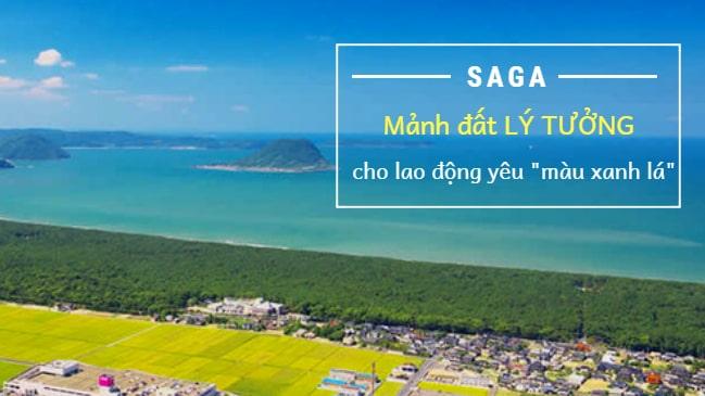 Tỉnh Saga Nhật Bản – vùng đất LÝ TƯỞNG cho các lao động Việt yêu màu xanh lá!