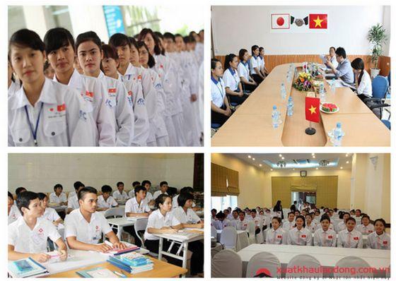 Xuất khẩu lao động Nhật Bản tại Quảng Nam