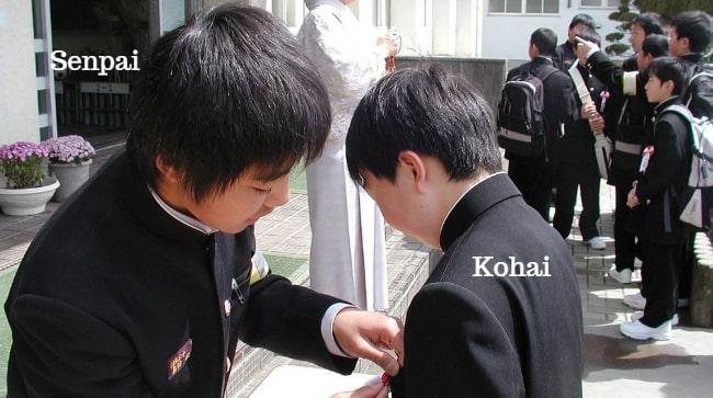 Senpai là gì? Phân biệt Senpai, Kohai, Sensei cho kỹ sư đi Nhật!