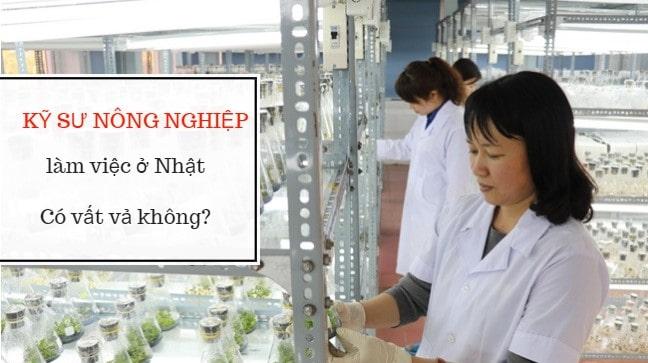 Kỹ sư nông nghiệp đi Nhật có VẤT VẢ không?