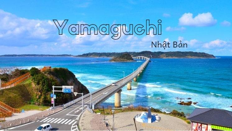 Tỉnh Yamaguchi Nhật Bản – đến và trải nghiệm cảm giác đi bộ dưới lòng biển!