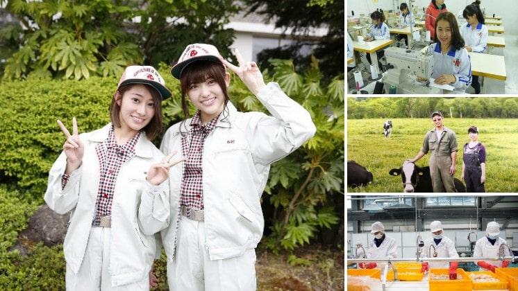 Bị CẬN THỊ nên chọn đơn hàng nào khi đi XKLĐ Nhật Bản?