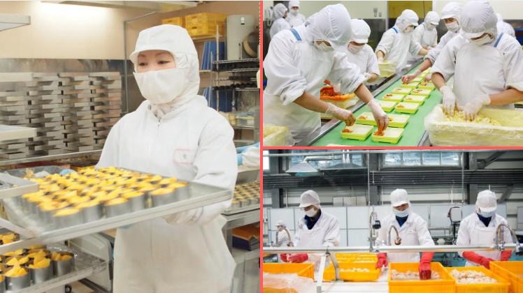 TOP đơn hàng quay lại Nhật lần 2 – lương cao như kỹ sư, tuyển gấp