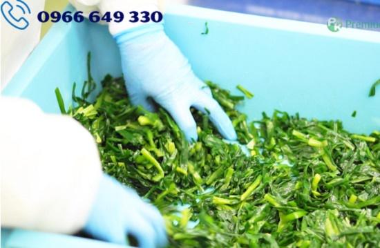 Tuyển gấp 32 nữ làm sơ chế rau trong siêu thị tại tỉnh Nara