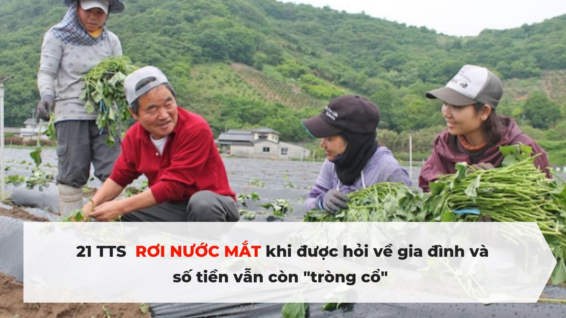 NHÓI LÒNG! Thực hư chuyện 21 TTS kỹ năng Việt ở Nhật Bản bị đuổi về nước